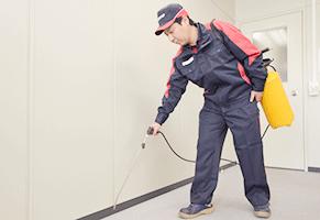ビルの環境衛生管理に基づく害虫駆除